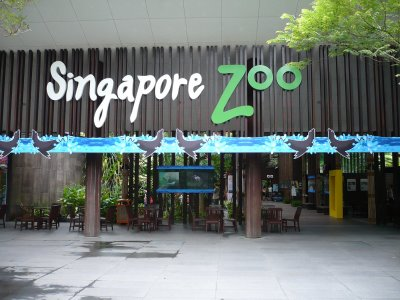 One day in the Singapore Zoo Singapore_zoo