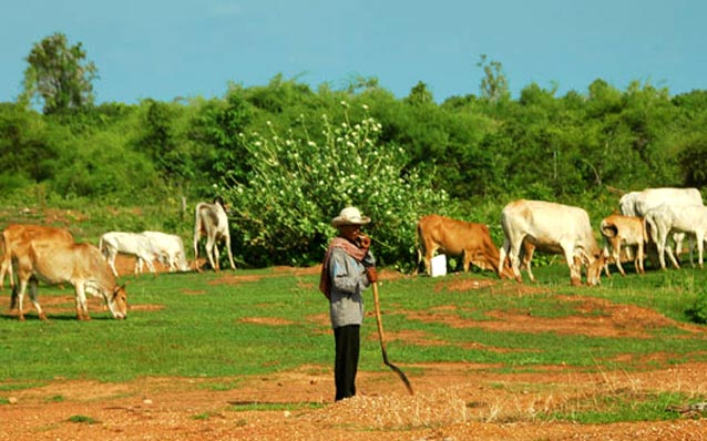 Kratie Cambodia  city pictures gallery : Kratie travel, Cambodia adventure, hotels in Kratie Cambodia